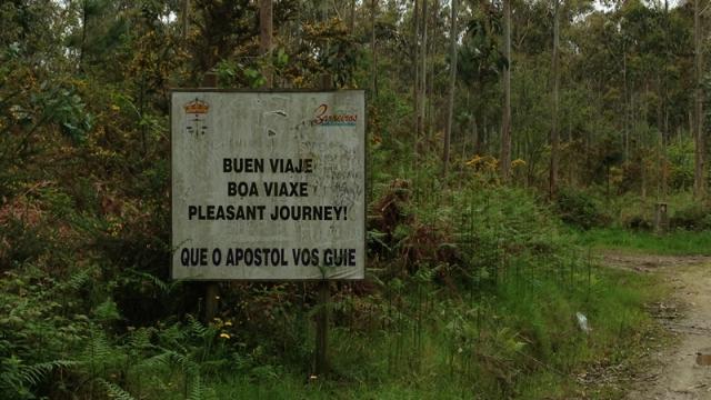 As sendas forestais abundan en Barreiros