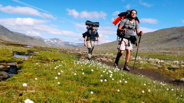 Bastones para el Camino de Santiago ¿Son necesarios?