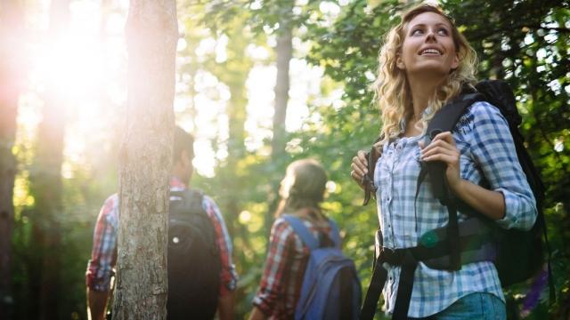 Bienestar en el Camino de Santiago: Beneficios para tu cuerpo