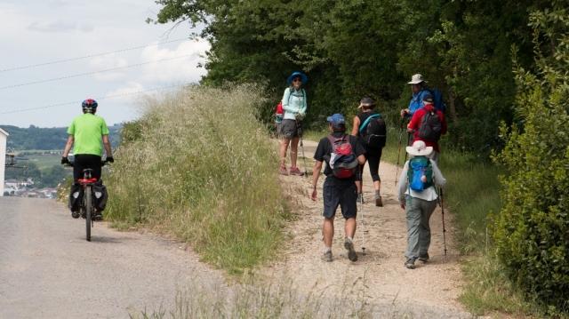 Camino de Santiago en grupo