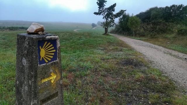 Camino de Santiago (Miguel Martins)