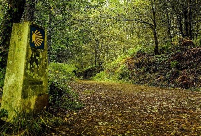 Camino Portugués (Mos - Pontevedra), por Rafel Fonseca