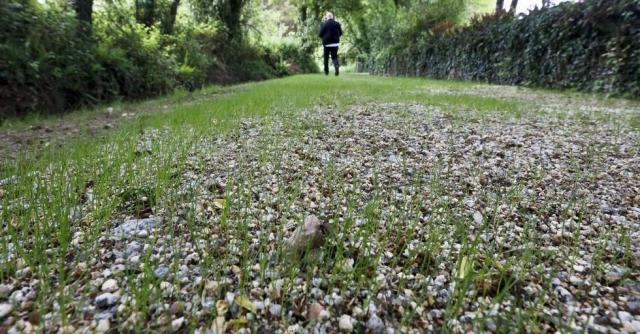 Camiño Primitivo en Bascuas