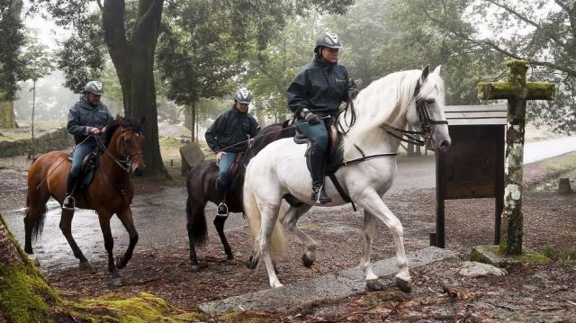 Cavalry unit of the Guardia Civil