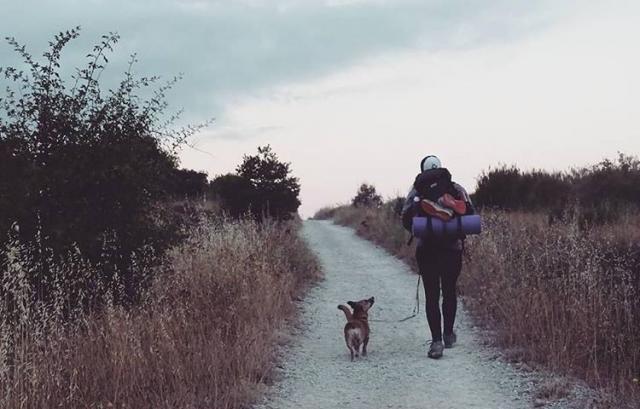 El Camino en la mejor compañía, por @jone_wlfz