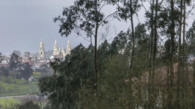 Etapa Pedrouzo-Santiago
