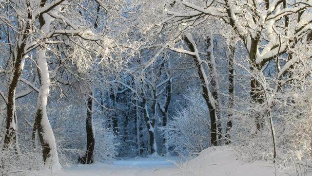 Hacer el Camino de Santiago en invierno