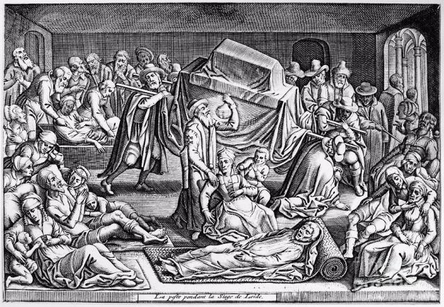 La peste negra asoló la población europea en la Edad Media
