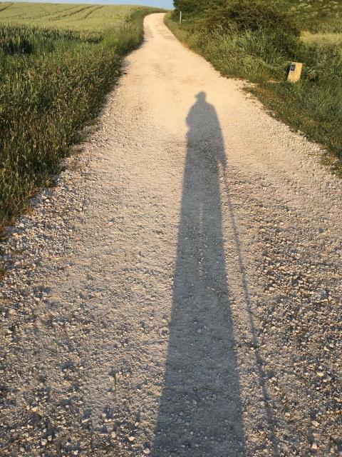 la sombra de la soledad del peregrino