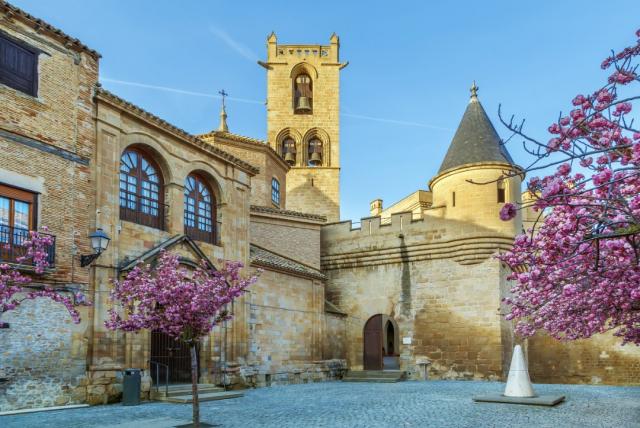 Palacio de los Reyes de Navarra - Borisb17/iStock