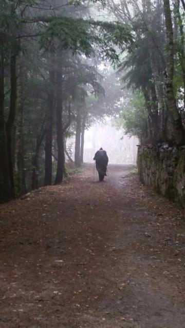 Peregrina hacia O Cebreiro, por Loremoi