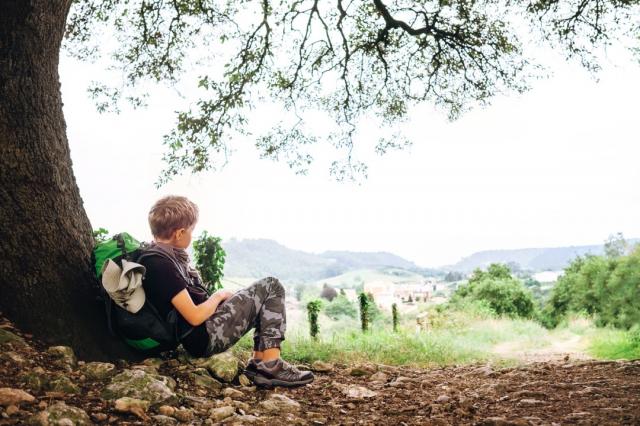 Peregrino descansando bajo un árbol durante el Camino - Solovyova/iStock