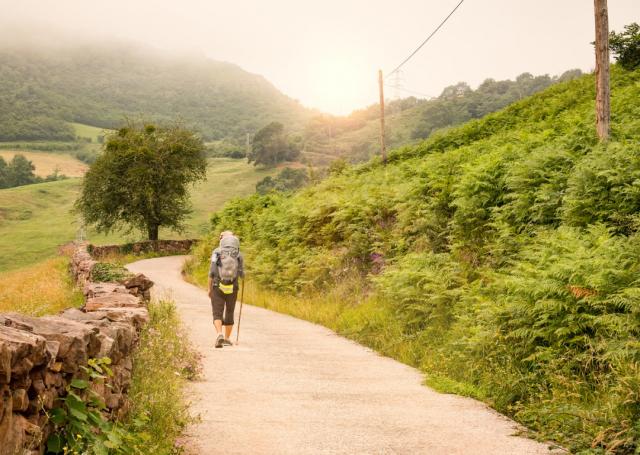 Peregrino en el Camino de Santiago - MarBom/iStock