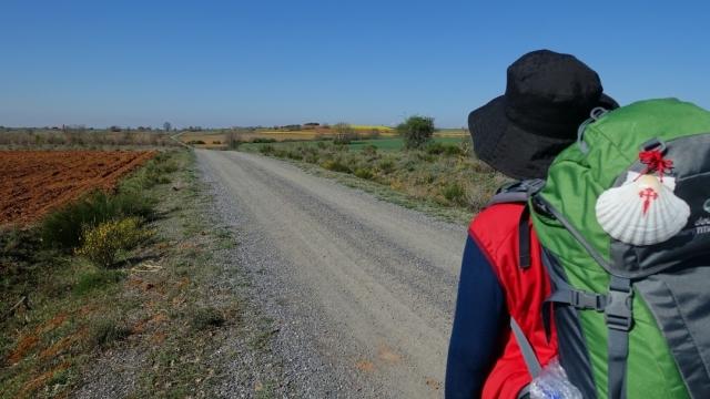 Peregrino en el Camino