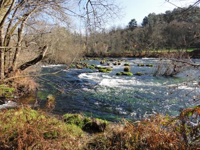 Río Ulla - Tanja 007/Wikimedia