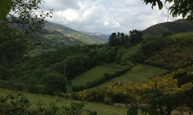 Valle del Valiñadares desde el alto de A Xesta