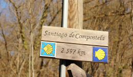 How can the Camino de Santiago change your life?