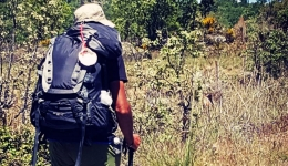 How much money does the Camino de Santiago cost?