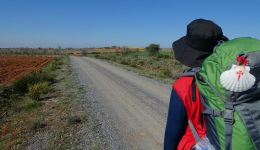 How to enjoy the Camino de Santiago without leaving home?