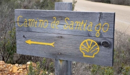 Do you need help deciding which Camino de Santaigo to do this year?