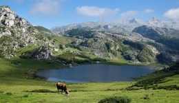 The best places in Asturias to rest during the Camino de Santiago