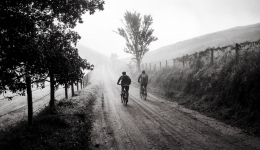 The Camino de Santiago by bike, did you think about it?
