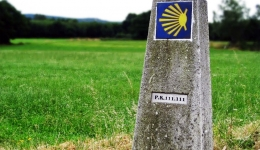 The records of the Camino de Santiago: The evolution in numbers