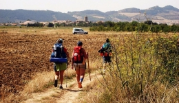 The routes and starting points of the Camino chosen by pilgrims