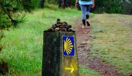 The signage on the Camino de Santiago