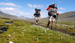 Walking sticks for the Camino de Santiago: Are they necessary?