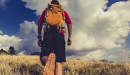 What does the Camino de Santiago mean today? How has it changed?