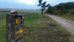 Why do we walk the Camino de Santiago in 2017?